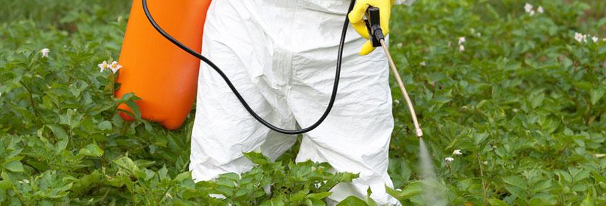 Usages de produits phytosanitaires